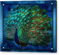 Being Yourself - Peacock Art Acrylic Print