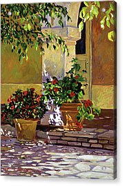 Bel-air Patio Steps Acrylic Print by David Lloyd Glover