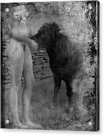 Belfast Nude With Mininature  Acrylic Print