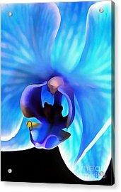 Believe In Blue Acrylic Print by Krissy Katsimbras