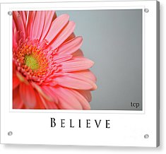 Acrylic Print featuring the photograph Believe by Traci Cottingham