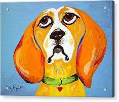 Belinda The Beagle Acrylic Print by Emily Reynolds Thompson