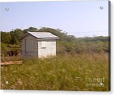 Belize - Field Shack Acrylic Print by Jason Freedman