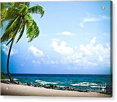 Belize Private Island Beach Acrylic Print