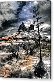 Acrylic Print featuring the photograph Bell Rock by Jim Hill