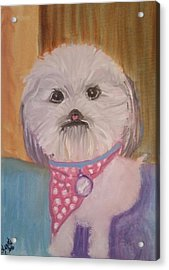 Acrylic Print featuring the painting Bella Baby by Carol Duarte