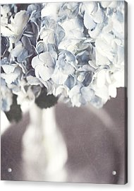 Bella Donna Acrylic Print by Lisa Russo