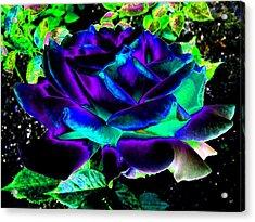 Bella Flora 4 Acrylic Print