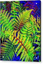 Bella Flora Acrylic Print