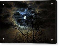 Bella Luna Acrylic Print