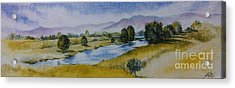 Bellinger Valley In Spring Acrylic Print