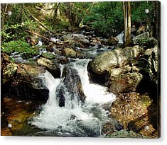 Acrylic Print featuring the photograph Below Anna Ruby Falls by Jerry Battle