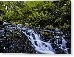 Below Pony Tail Falls Acrylic Print