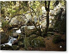 Below Vernal Falls  Acrylic Print by Chris Brewington Photography LLC