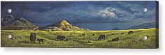 Belt Butte Spring Acrylic Print