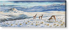Acrylic Print featuring the painting Belt Butte Winter by Kim Lockman