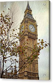 Ben In Autumn Acrylic Print by JAMART Photography