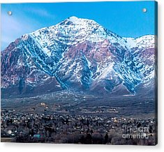Ben Lomond At Dusk Acrylic Print