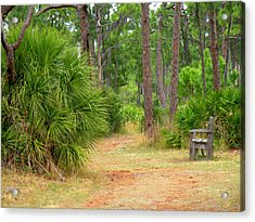 Bench On The Nature Walk Acrylic Print by Rosalie Scanlon