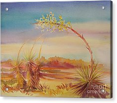 Bending Yucca Acrylic Print by Summer Celeste