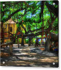 Beneath The Banyan Tree Acrylic Print