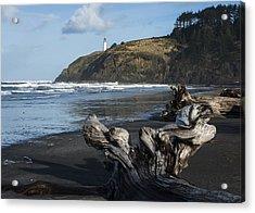 Benson Beach And North Head Acrylic Print