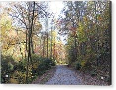 Bent Creek Road Acrylic Print