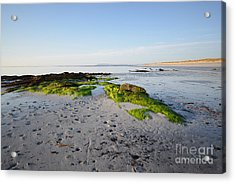 Berneray Acrylic Print