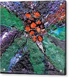 Berries Bursting Bright Acrylic Print by Anne-Elizabeth Whiteway