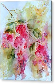 Berries Galore Acrylic Print by Lucia Del