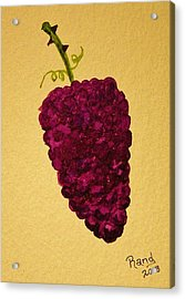 Berry Good Acrylic Print by Rand Swift