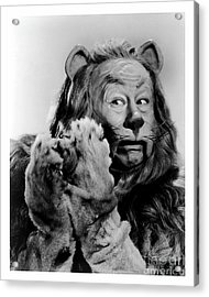 Bert Lahr As The Cowardly Lion In The Wizard Of Oz Acrylic Print