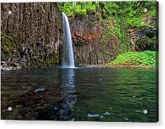 Beside Abiqua Falls In Summer Acrylic Print by David Gn