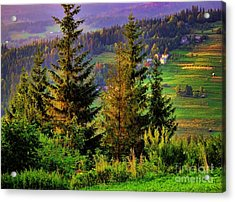 Acrylic Print featuring the photograph Beskidy Mountains by Mariola Bitner