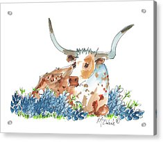 Bessie In The Bluebonnets Watercolor Painting By Kmcelwaine Acrylic Print