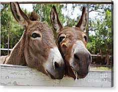 Best Buddies 2 Acrylic Print