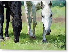 Best Buddies Acrylic Print