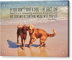 Best Buds Quote Acrylic Print by JAMART Photography