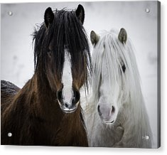 Best Friends II Acrylic Print