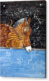 Best Friends. Acrylic Print by Patricia Fragola