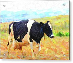 Betsy The Milk Cow Coming Home Acrylic Print by Wingsdomain Art and Photography