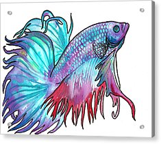 Betta Fish Acrylic Print