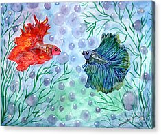 Betta Magic Acrylic Print by Saranya Haridasan