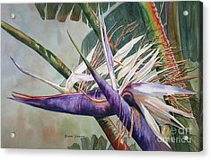 Acrylic Print featuring the painting Betty's Bird - Bird Of Paradise by Roxanne Tobaison