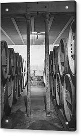 Between The Barrels - Vertical Acrylic Print by Georgia Fowler