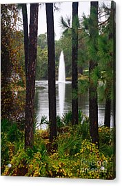 Acrylic Print featuring the photograph Between The Fountain by Lori Mellen-Pagliaro