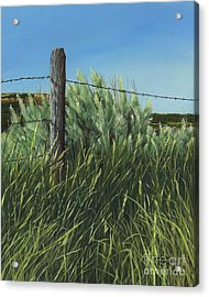 Between You, Me And The Fence Post Acrylic Print