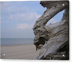 Acrylic Print featuring the photograph Driftwood by Maciek Froncisz
