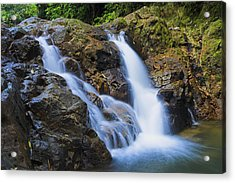 Bexon Waterfall In Color- St Lucia  Acrylic Print by Chester Williams
