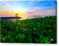Acrylic Print featuring the photograph Beyond Beauty  by Kadek Susanto